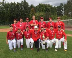 2 место - Чемпионат Московской области по бейсболу 2016г.